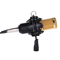 BM 800 Condenser Microphone Computer Wired Professional Microphones Studio 3.5mm Mic For PC Karaoke Recording With Shock Mount