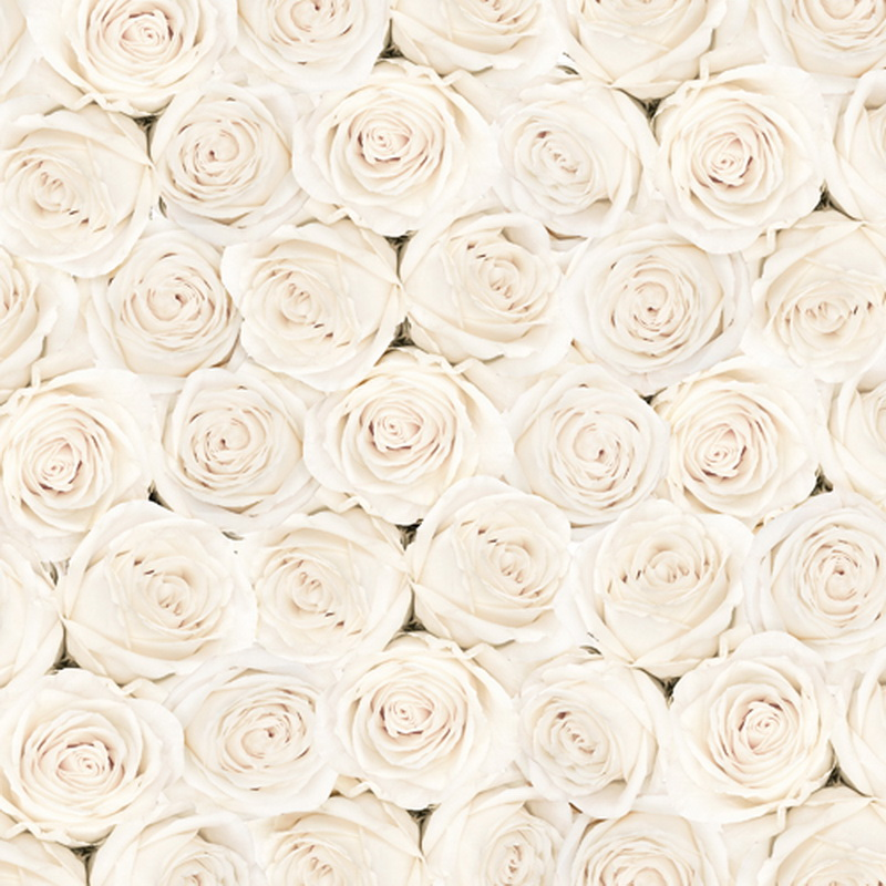 white flower roses wedding photography backdrop studio