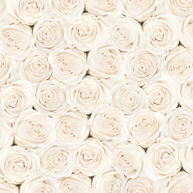 White flower roses wedding photography backdrop studio valentines white flower roses wedding photography backdrop studio valentines photography backdrops studio wedding background d 1804 mightylinksfo
