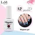12pcs Free Shipping  Cat Eyes Nail Gel Soak Off Nail UV Polish Magnetic Nail Art Varnish 48colors for choose