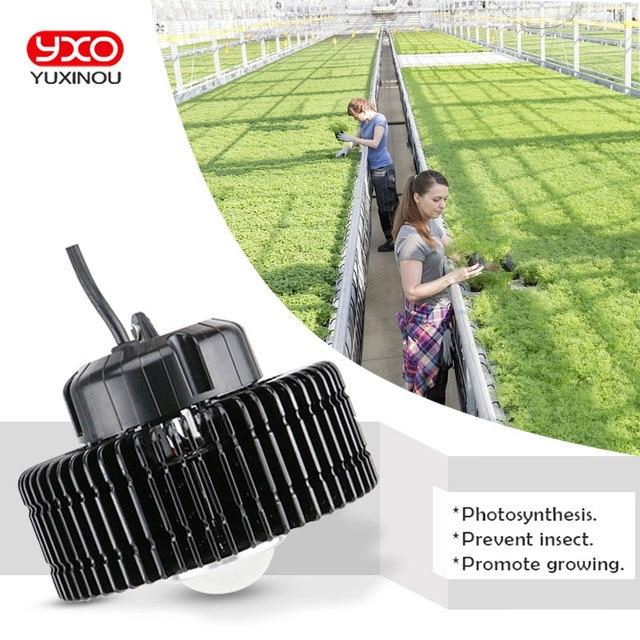 קריס CXB3590 3500K 100W COB LED לגדול אור ספקטרום מלא MeanWell נהג CREE LED מנורה גדלה צמח מקורה צמיחת לוח אור