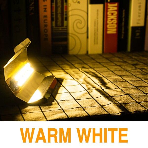 Светодиодный чип COB 30 Вт 50 Вт 80 Вт AC220V светодиодный светильник для выращивания растений полный спектр фитолампа для комнатных садовых растений гидропоника, шатер для выращивания - Испускаемый цвет: Warm White
