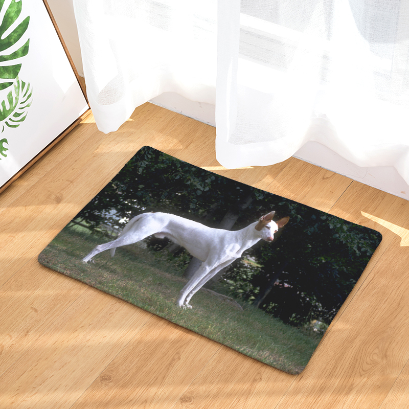 New Home Decor Dogs Print Carpets Non slip Kitchen Rugs ...