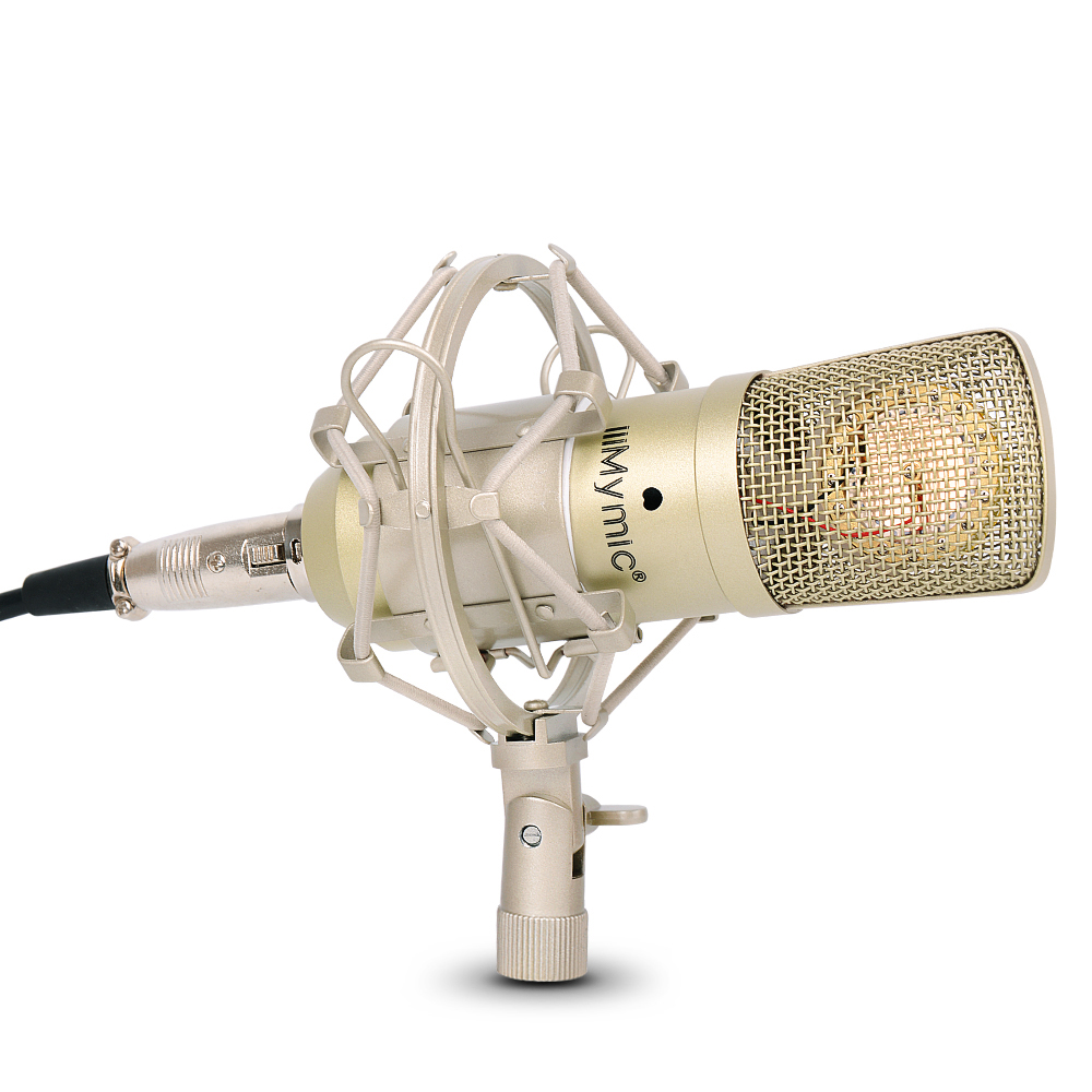 i ONE Condenser Microphone 34mm Gold Diaphragms Capsule Professional Capacitor Mic with Metal Stand for Recording