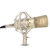 i ONE Condenser Microphone !! 34mm Gold Diaphragms Capsule !! Professional Capacitor Mic with Metal Stand for Recording
