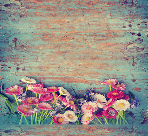 ФОТО 10X10ft thin vinyl photography flowers backgrounds Computer Printed children Photography backdrops for Photo studio CM-6537