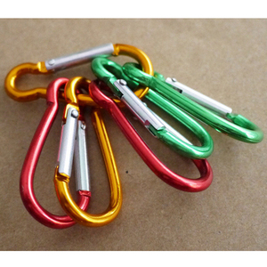 Image 2 - 5pcs 다채로운 알루미늄 합금 R 모양의 Carabiner 키 체인 후크 봄 스냅 클립 캠핑 하이킹 등산 액세서리 여행 키트
