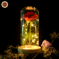 WR Birthday Gift Beauty and the Beast Red Rose with Fallen Petals in a Glass Dome on a Wooden Base for Valentine's Gifts