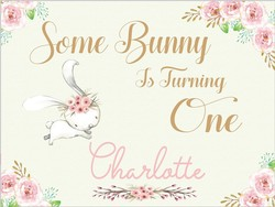 Niestandardowe Bunny królik kwiat 1st Baby Shower tło do zdjęć wysokiej jakości wydruku komputerowego urodziny