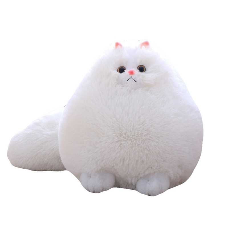 Detail Feedback Questions About Fun Plush Fluffy Cats Big White Cat