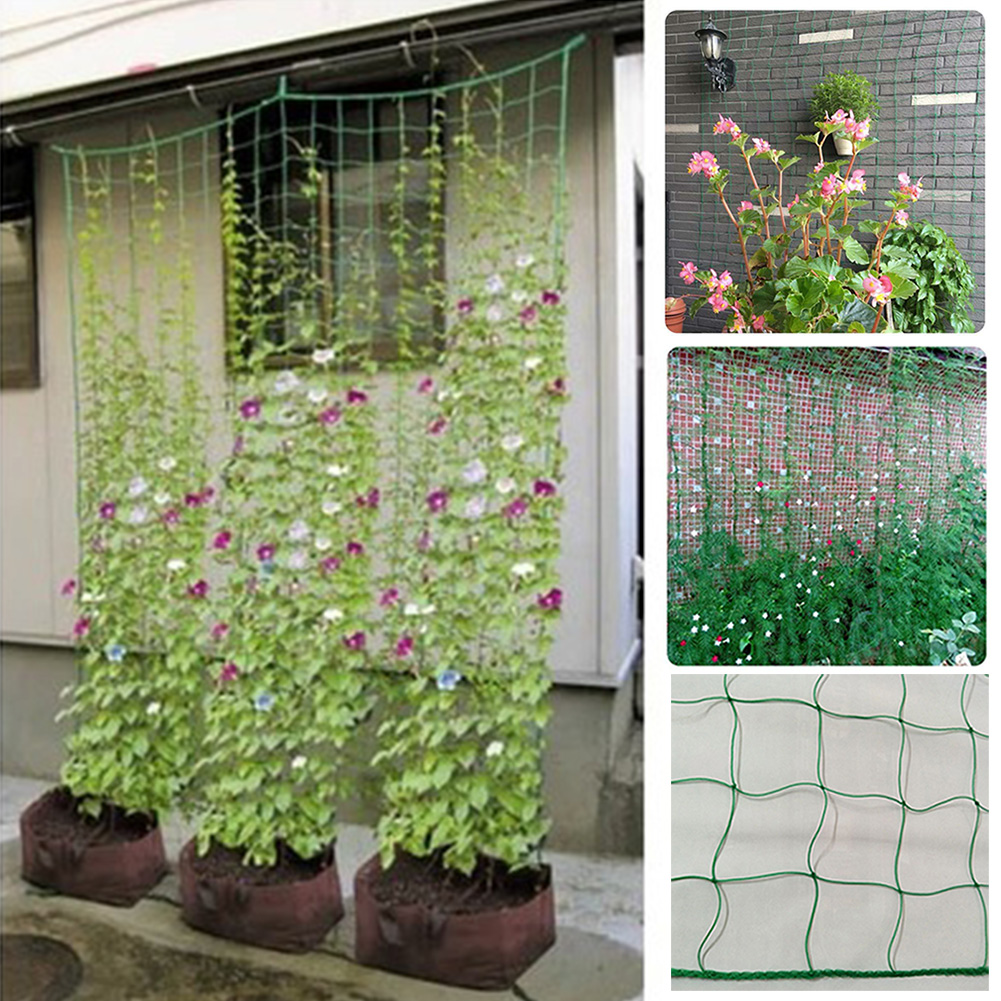 Greenhouse Trellis Nylon Plant Protection Climbing Frame Fruits Bean Support Garden Netting Durable Vines Anti Bird Grow Fence