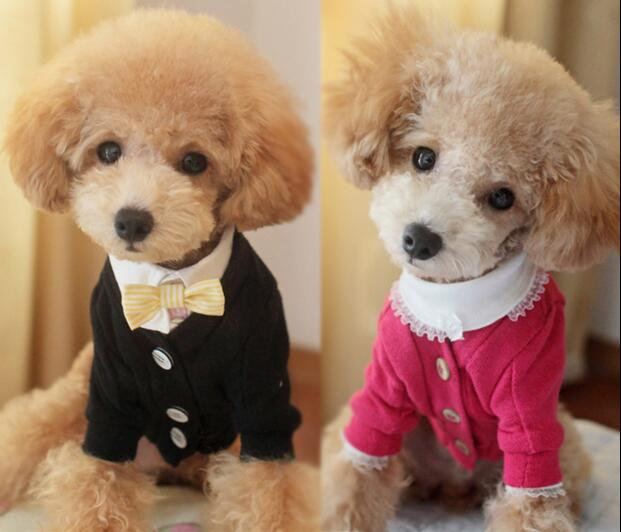 Leisure pet clothes autumn and winter  sweater pet dog clothing (excluding shirt)