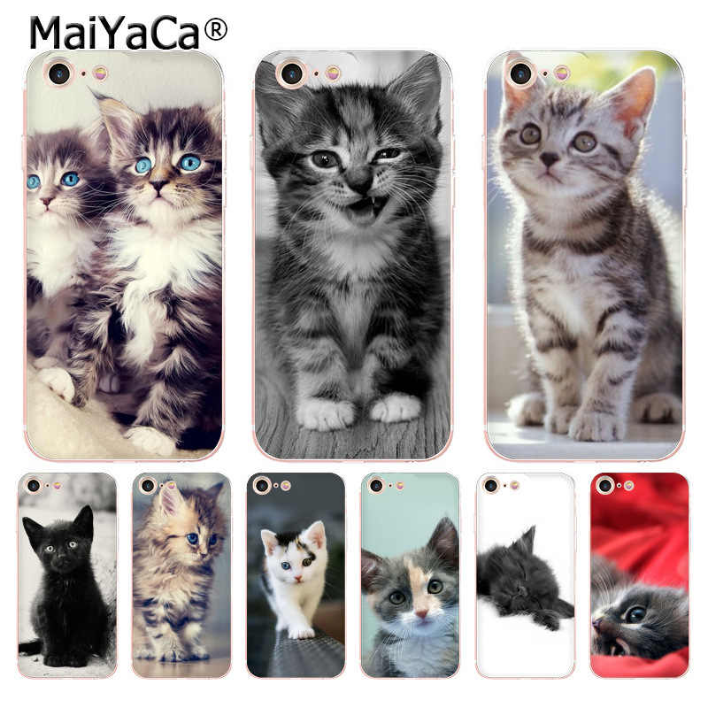 MaiYaCa For iphone 7 6 X Case Funny Kitten Cat Transparent Phone Cover Case for iPhone 8 7 6 6S Plus X 5 5S SE 5C XS XR Cases