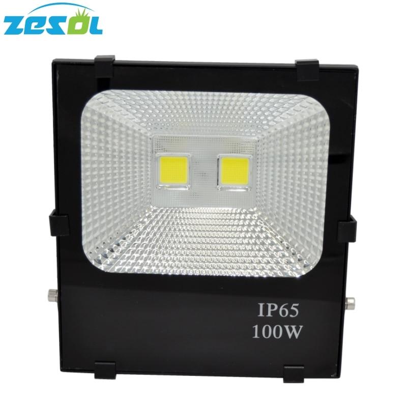 ZESOL นำเติบโตไฟ 100 วัตต์แสงกลางแจ้ง Gargen โคมไฟสปอตไล Refletor AC85-265V IP65 กันน้ำ