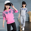 Girls set new spring 2017 Korean girls long sleeve floral t-shirt+pants two piece suit children clothing set