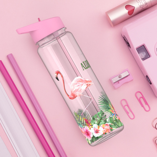 Bpa Free 750ml 100%Tritan Sports Outdoor Straw Water Bottle With Flamingos Printing My Drink Juice Handle The Unicorn Kettle 1