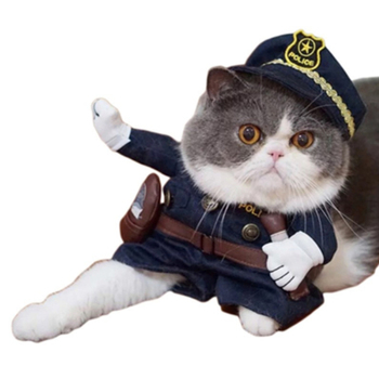 Funny Uniforrm Cat Halloween Costumes  1