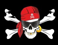 Pirate Flag 3X5 Ft Custom Jolly Roger SUN GLASSES SKULL AND CROSS Banner 90x150cm FP23
