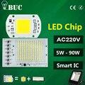 COB LEVOU Lâmpada 5 W 10 W 20 W 30 W 50 W LEVOU Chip De 220 V de Entrada IP65 IC Inteligente Apto Para DIY CONDUZIU a Luz de Inundação Branco Frio Branco Quente