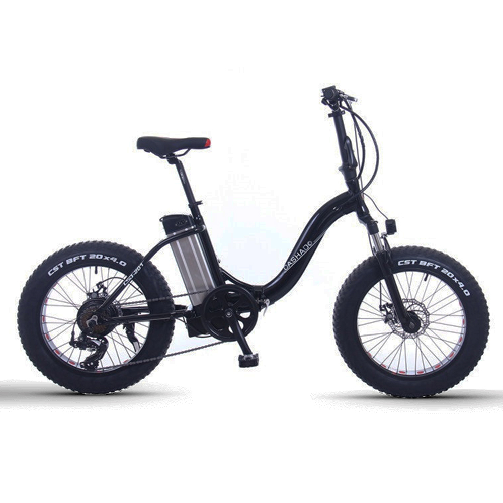 20inch Snow electric bicycle 48V12AH lithium battery 500w rear wheel motor fat e bike folding electric mountian bicycle
