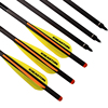 New 20 Carbon Crossbow Bolts With Easton Vane For Archery Outdoor Hunting Free Shipping