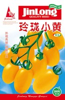 1 Original Pack Jinlong Small exquisite Yellow tomato Seeds Balcony fruits Vegetables Tomatoes Potted Seeds