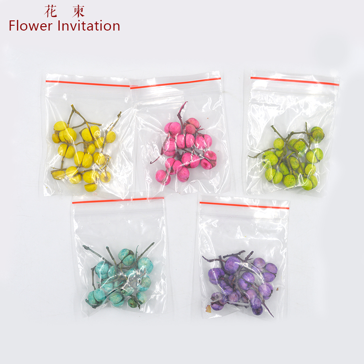 Flower Invitation Color manual dry fruit flower plant specimens of Chinese tallow seed natural dried flowers in Jewelry Findings Components from Jewelry Accessories
