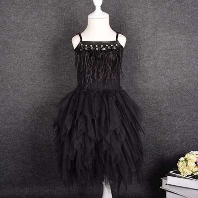 Spring Summer Feathers...