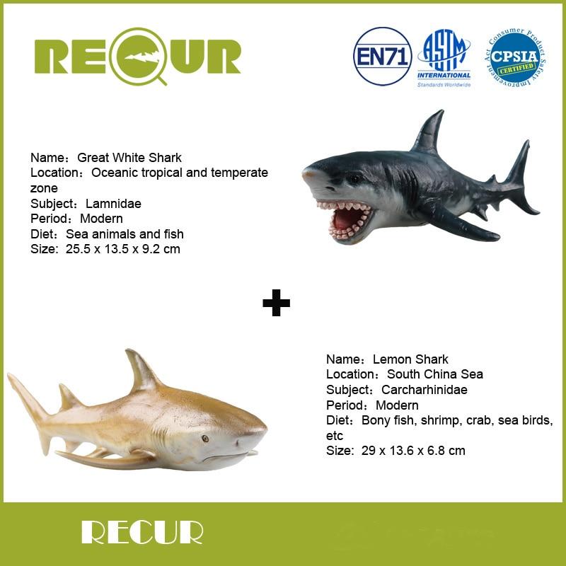 Lemon Shark Toys : Shark items promotion shop for promotional on