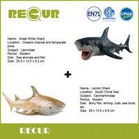 2 Pcs Lot Recur Toys Lemon Shark Great White Shark Sea Life Model PVC Hand Painted