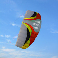 free shipping high quality large Parafoil Kite quad line stunt kite With Flying Tools Braid Sailing Kitesurf Sports Beach kite