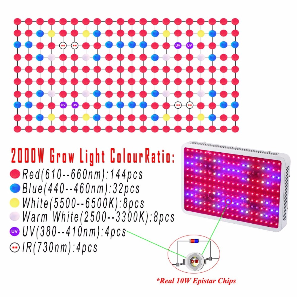 2PCS 2000W Double chips LED Grow Light 10W chips Full Spectrum For Indoor Grow Tent Aquarium Grow Lightning Plant Lamp Plant