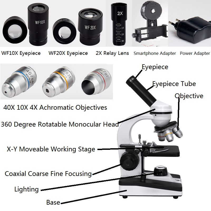40X 1600X Monocular Biological Microscope Illuminated Bio microscope School Laboratory with 2X Relay Lens Smartphone Adapter-in Microscopes from Tools    2