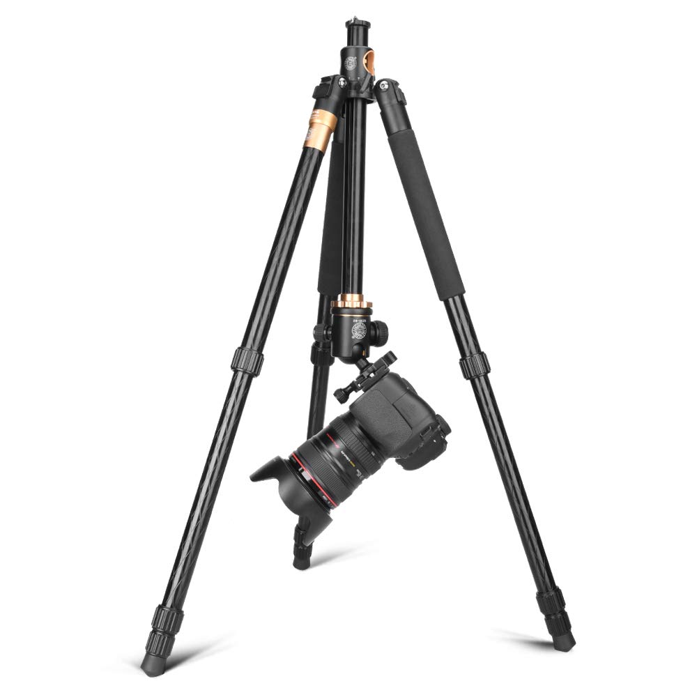 Image 4 - Cadiso Q999H Professional Video Camera Tripod 61 Inch Portable Compact Travel Horizontal Tripod with Ball Head for Camera-in Live Tripods from Consumer Electronics