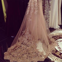 Champagne New Bridal Veil for Wedding Lace Sequin Cathedral Wedding Veils Custom Made with Comb