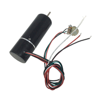 High Speed BLDC Electric Motor 24V 5000Rpm Diameter 32mm 24V BLDC Small Electric Brushless With Adjustable Speed DC Motor
