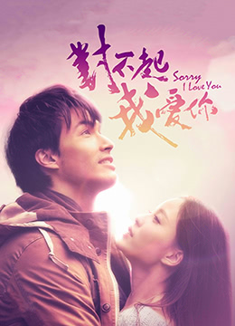 《对不起,我爱你》2013年中国大陆,加拿大爱情电影在线观看