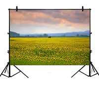 5x7ft Sunflowers Nature Fields Trees Clouds Polyester Photo Background Portrait Backdrop