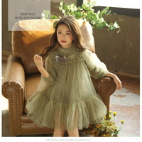 Spring Summer Girls Dress 2018 Casual Long Sleeves Lace Mesh Kids Dresses For Girl Autumn Clothing
