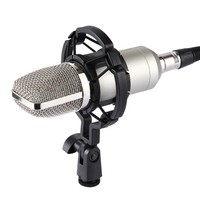 HAWEEL Professional Condenser Sound Recording Microphone with Shock Mount for Studio Radio Broadcasting & Live Boardcast