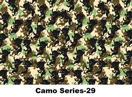 camo-29