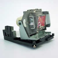 Original 5J.J0W05.001 Projector Lamp with Housing for BENQ W1000 / W1000+