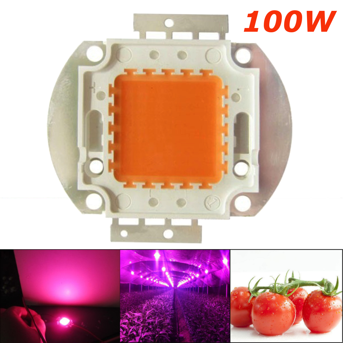 Jiguoor High Power LED Chip Full Spectrum Grow Light Lamp 100W 380nm - 840nm COB Beads For Indoor Plant Growth 1PCS