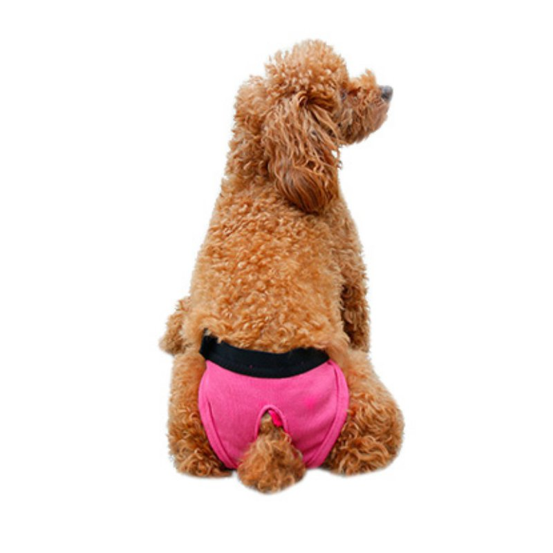 Small Female Dog Pants Sanitary Underwear Cute Hygienic Pant Short Cotton Pet Physiological Panties Briefs Dogs 2018 Hot Sale