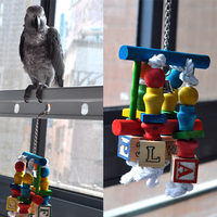 Colorful Parrot Bird Wood Toys Swing Chew Toys Fun For Gold Macaw Sun Conure