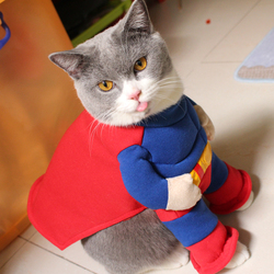 [MPK Store] Muscular Superhero Cat Costume, Funny Cat Clothes, Pet Costume