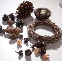 One Set Dried Plant Fruits Pinecone Bird Nest Egg Wreath For Wedding Party Home Hotel Venue Decoration Craft DIY Accessory A