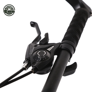 Image 4 - Love Freedom Top quality Bike 7/21/24/27 Speed 26 * 4.0 Fat Bike Shock Absorbers Bicycle Free Delivery Snow Bike