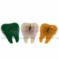 2018 good quality 1 pcs Dental clock dental wall clock Dental accessories clock dental material