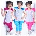 Акция! новый 2014 Летней Девушки Комплект Одежды для Детей Девушки Мода Повседневная С Коротким рукавом Красивые Shoudlers Цветы Twinset Набор